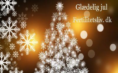 Glædelig jul til alle jer, fra os på Fertilitetsliv.dk