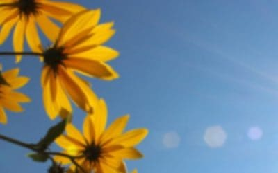 Min solstrålehistorie
