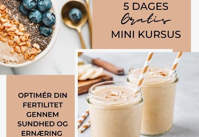 5 dages gratis online minikursus om sundhed og ernæring.