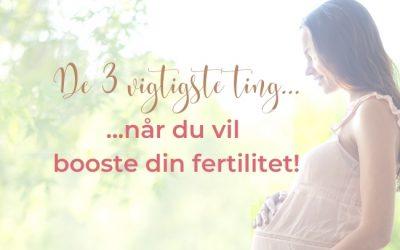 De 3 vigtigste ting, når du vil booste din fertilitet!